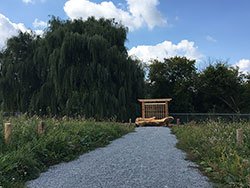 Willow's Rest Green Burial area pathway