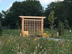 Willow's Rest Green Burial trellis and field
