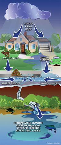 Graphic of the path storm water takes to the catch basin - Courtesy of NCDENR