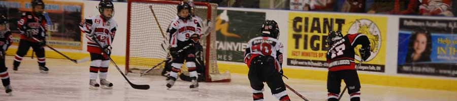 Youth hockey team in Niagara Falls at the Gale Centre